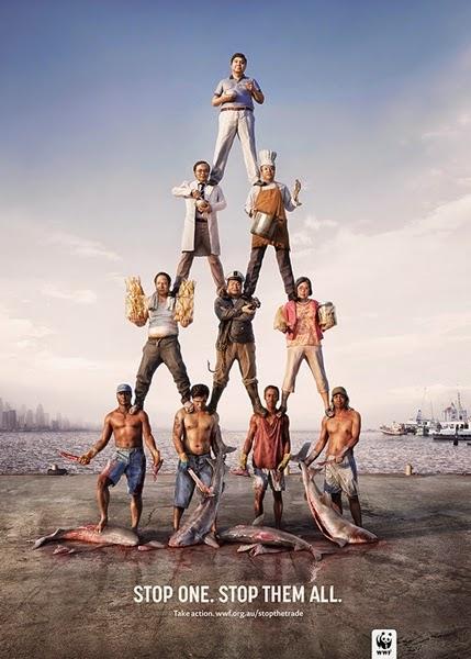 anuncio-wwf-piramide-3