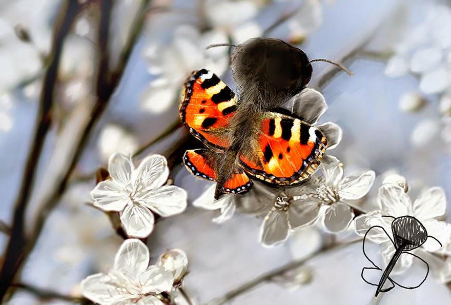 telmo-pieper-ilustracion-mariposa
