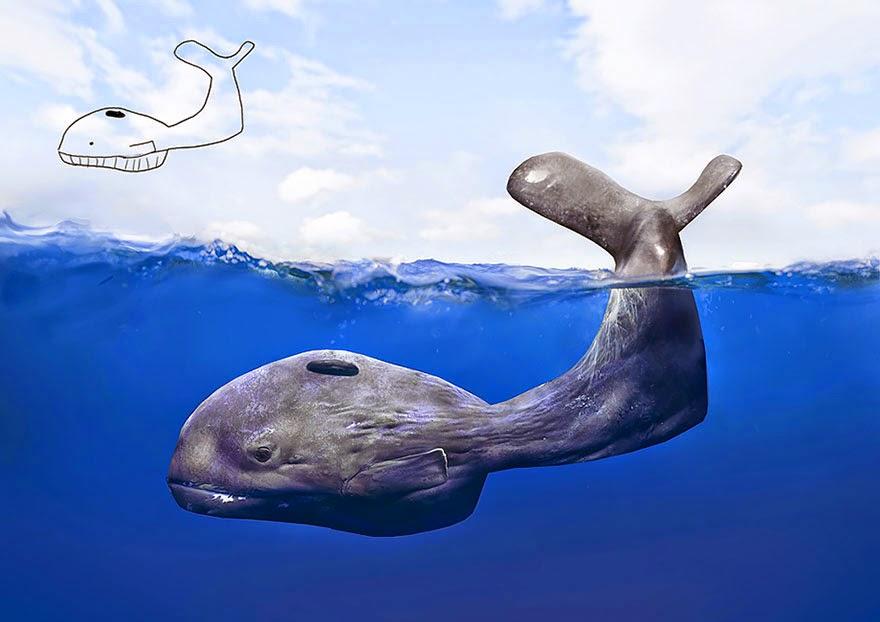 temo-pieper-ilustracion-ballena