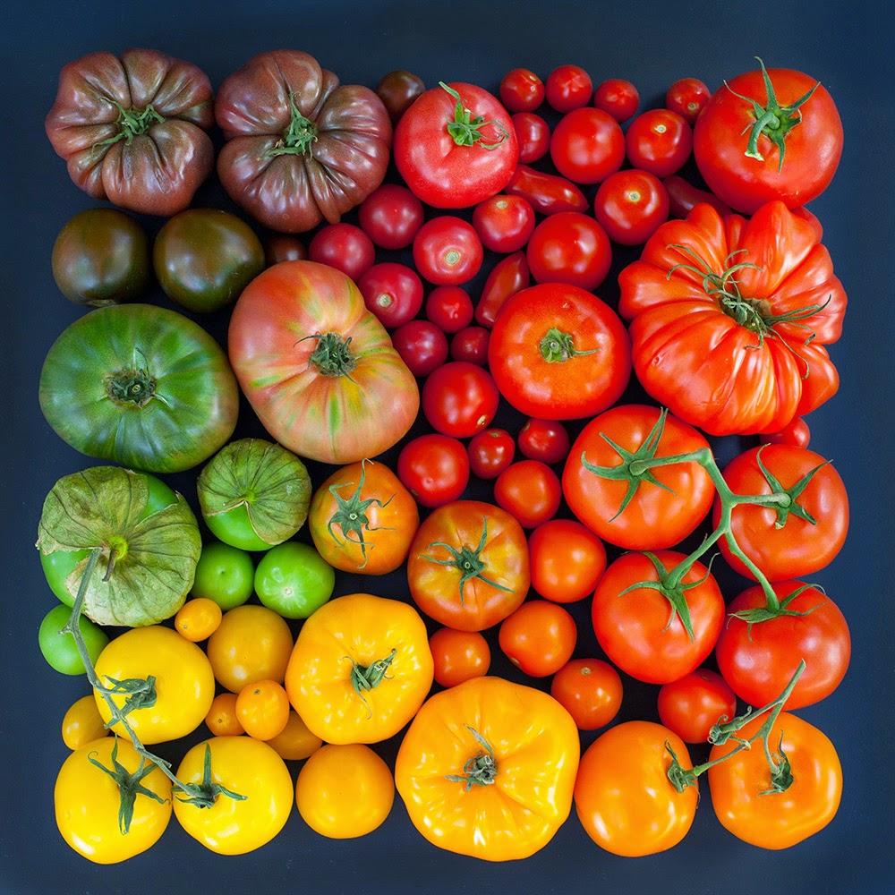 verduras-fotografia-emily-blincoe