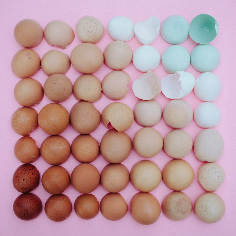 emily-blincoe-fotografia-huevos